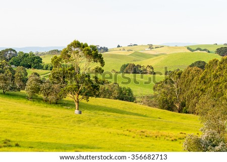 Countryside of Southern Victoria, Australia.