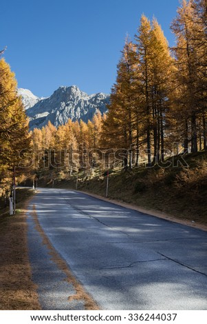 Countryside road in Dachstein mountains in Austria. View on the autumn larch trees in front of giant rock mountain.
