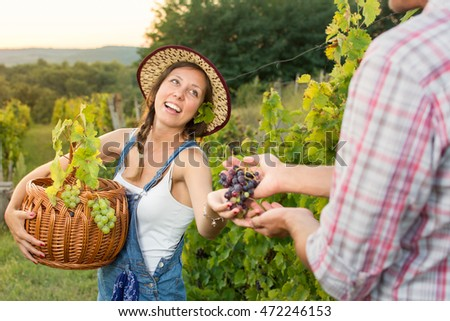 Couple in grape picking at the vineyard holding a basket