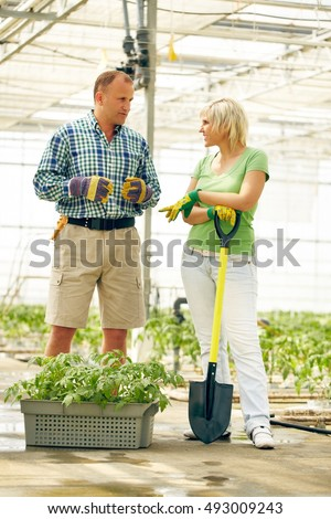 Couple of gardeners communicating with each other in greenhouse