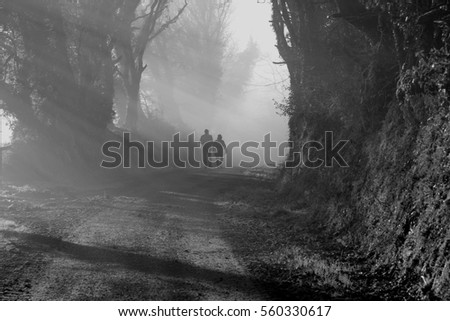 Couple walking in the foggy forest with beautiful morning sun rays