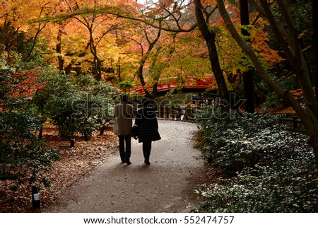Couple walking to the bridge in a Japanese garden during Fall season