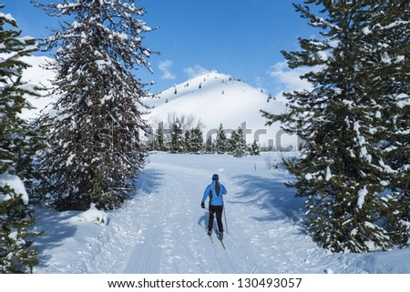 Cross-country skier on a perfect winter day in Idaho