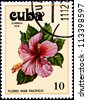 CUBA - CIRCA 1978:A Postage Stamp Shows Flowers of the Pacific Ocean, circa 1978 - stock photo