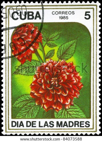 "CUBA - CIRCA 1985: A Stamp printed in CUBA shows image of a Dahlias, from the series ""Mother's Day"", circa 1985"