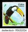 CUBA - CIRCA 1989: A stamp printed in Cuba shows Ramphastos toco, series, circa 1989 - stock photo