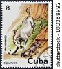 CUBA - CIRCA 1981: A stamp printed in Cuba shows wild horse, circa 1981 - stock photo