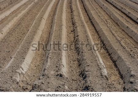 cultivated soil/fresh forrow/plough in