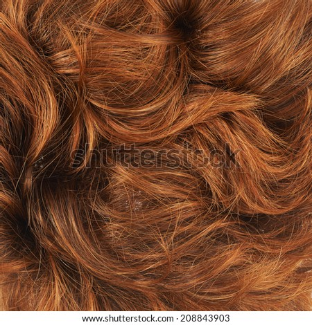 long curly brown hair stock photo 43288696 shutterstock