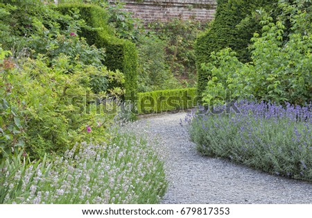 Curved Stone Walk Way Between Purple And White Lavender Flowers Leading To A Green Hedge Gate