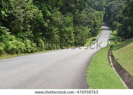 Curving Road In The Country Side