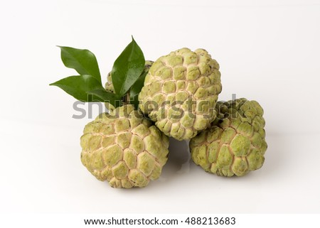 Custard Apple (Annona squamosa L.) fruit of Thailand.