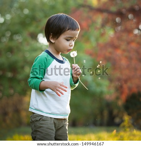 Cute little boy blowing a dandelion flower.