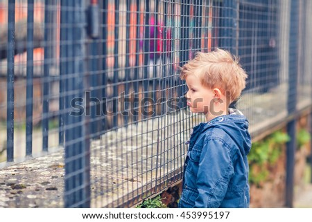 Cute little boy is sad and alone standing by the animal cage in the zoo