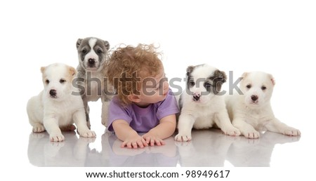 Cute puppies and little boy. isolated on white background