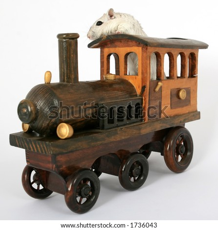 Cute rodent driving a wooden train