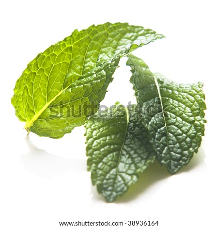 Cutting of Mint leaves isolated on white