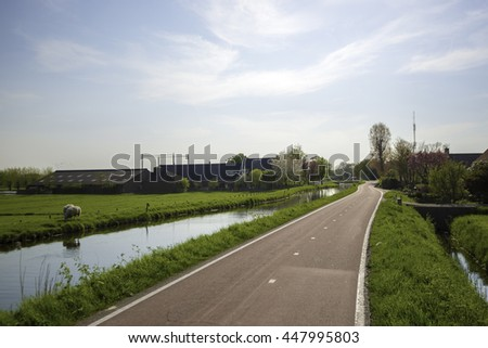 Cycle Path and Canal through a Dutch Polder Landscape in Maasland, the Netherlands, with a Farm and grazing Sheeps in a Meadow