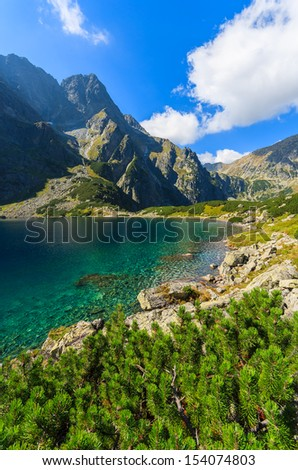 Czarny Staw alpine lake near Morskie Oko on sunny summer day, Tatry Mountains (High Tatras), Poland