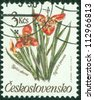 CZECHOSLOVAKIA - CIRCA 1990: A post stamp printed in Czechoslovakia shows Tigridia pavonia flower, circa 1990 - stock photo