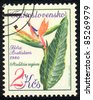 CZECHOSLOVAKIA - CIRCA 1980: A stamp printed in Czechoslovakia shows image of a Strelitzia reginae, circa 1980 - stock photo