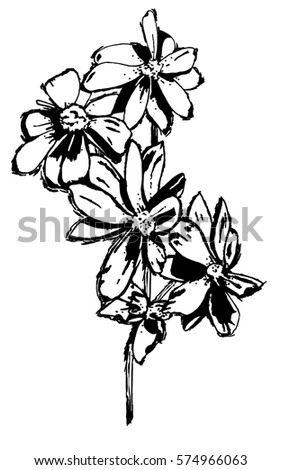 daisy coloring pages no stem - photo#35