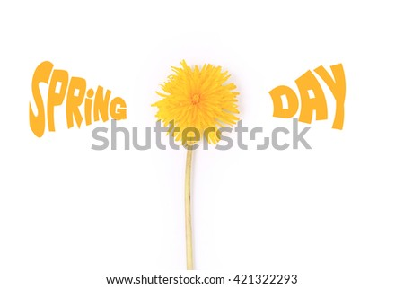 dandelion with an inscription spring time isolated on white background top view of a flat style