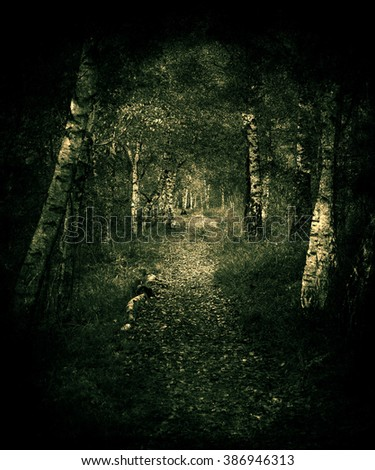 Dark Night In A Forest, Beautiful grunge vintage landscape