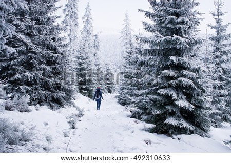Deep winter in Karkonosze Mountains