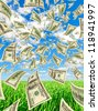 Deformed dollars in the sky and grass, vertical. - stock photo
