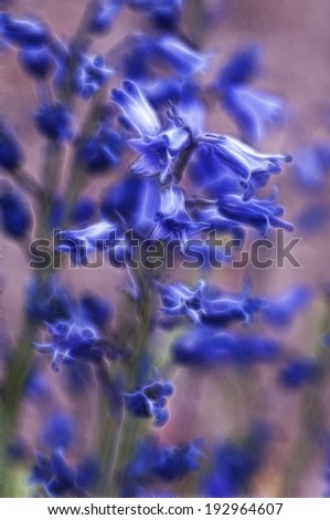 Delicate Blue Trumpets