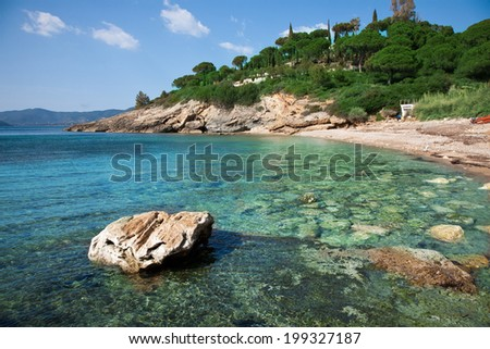 desert beach surrounded by nature and crystal clear sea in Elba Island