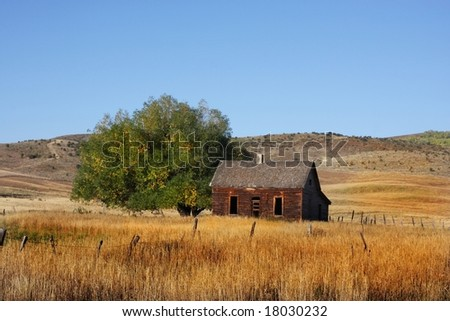 Deserted Farm with wheat grassand blue skys