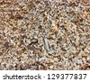 Detail of a wood chips pile in a biomass power plant - stock photo
