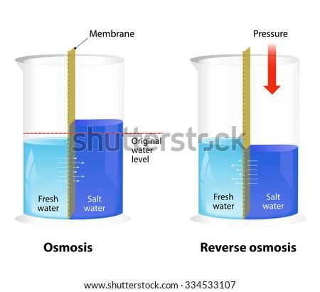 Designua S Quot Physics Quot Set On Shutterstock