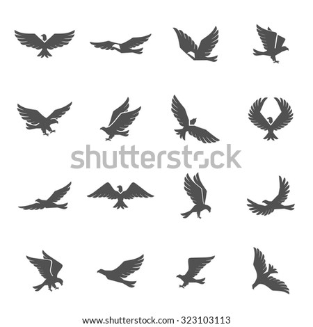 Different eagle birds spreding their wings and flying icons set isolated  illustration