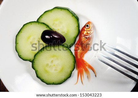 dinner setting on wooden table. fork and plate with golfish and salad