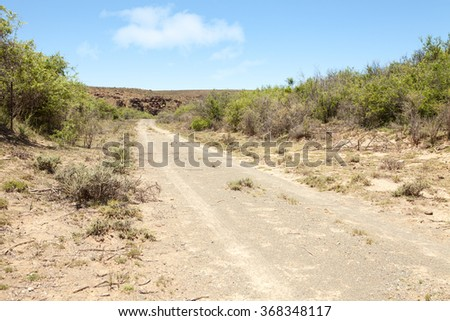 Dirt road surrounded by vegetation, leading towards rocky hill in arid region