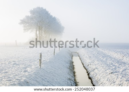 Ditch in a winter landscape with trees
