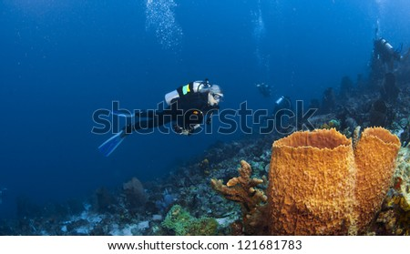 Diver and Orange Sponges in St Lucia and divers in the background
