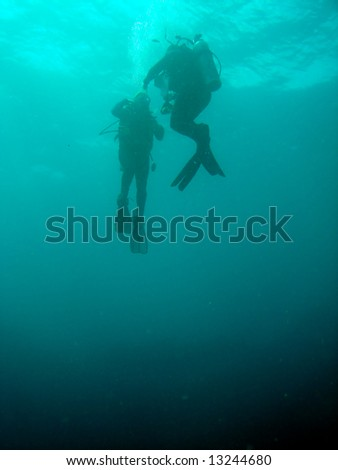 Divers in clear water