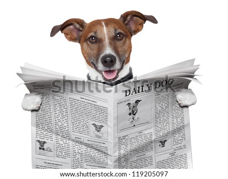 dog reading and holding a  newspaper