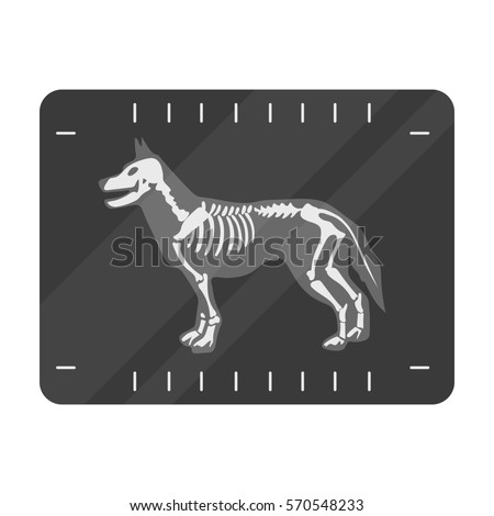 Dog Xray Icon Cartoon Style Isolated Stock Vector ...