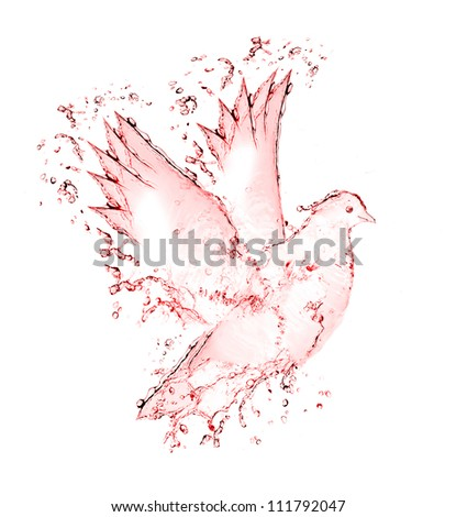 dove made out of wine splashes isolated on white