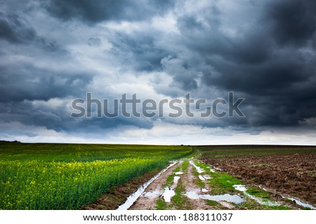 Dramatic landscape with heavy clouds and a muddy rural road through a rape field