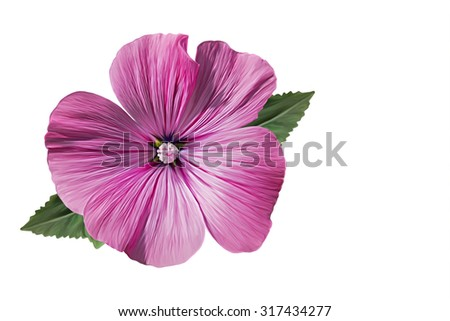 Drawing beautiful pink flower on a white background