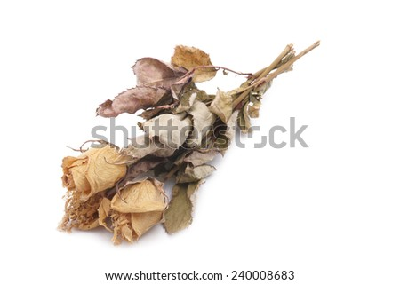 Dried Bouquet of Roses on white background