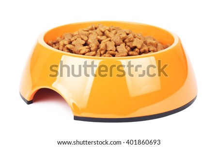 Dry Cat Food In Orange Bowl