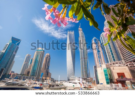 Dubai Marina with flowers in Dubai, United Arab Emirates