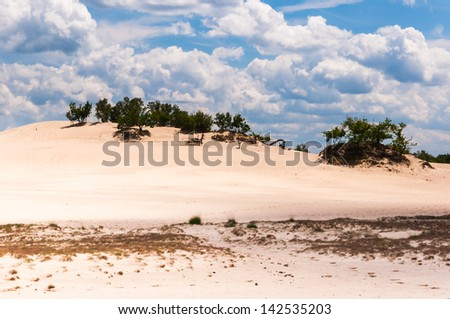 Dunes in a Dutch nature reserve on a hot summer day with a blue sky and impressive white clouds.